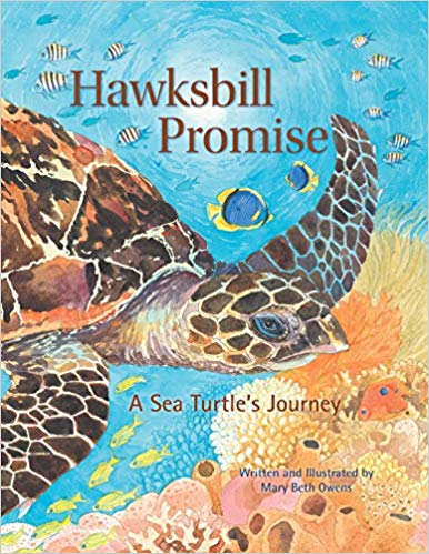 Hawksbill Promise: The Journey of an Endangered Sea Turtle