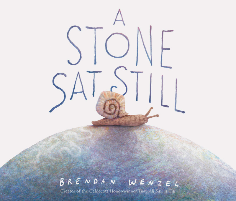 Teaching Ideas for Brenden Wenzel's A Stone Sat Still