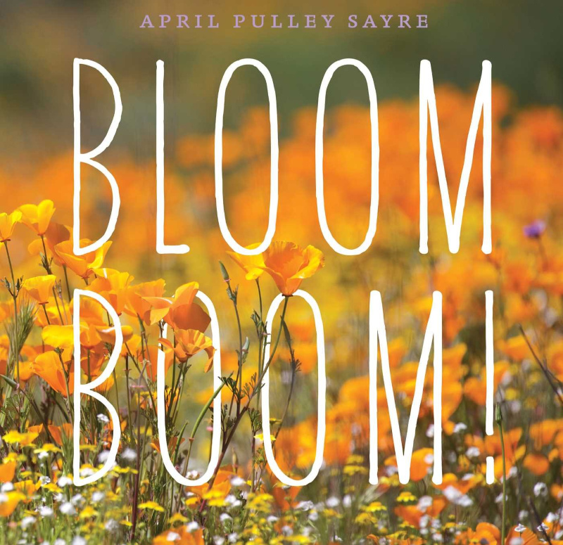 Teaching Ideas for Bloom Boom!
