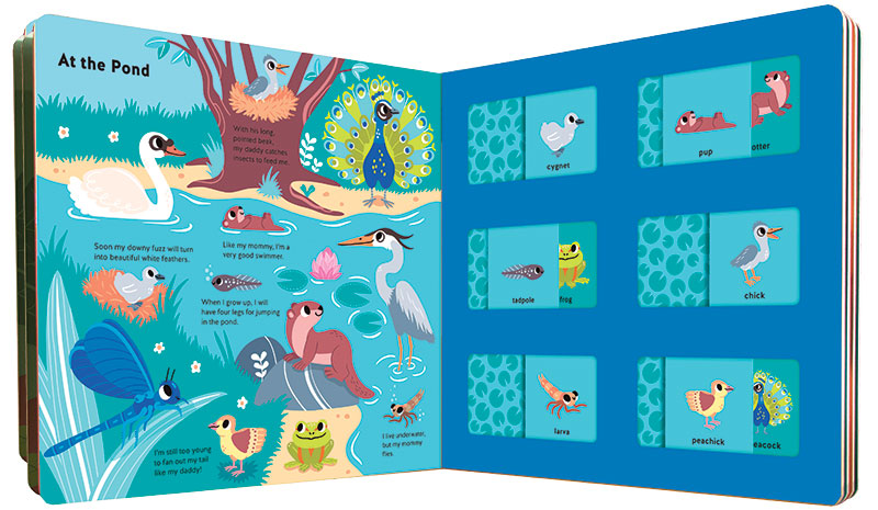 View from the lap: Toddlers can explore the world around them without leaving home | Board Books Roundup
