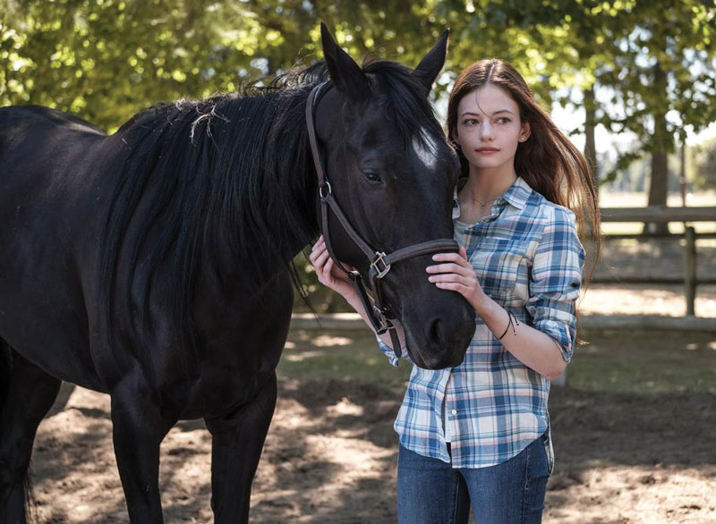 Four Middle Grade Read-Alikes for Fans of the New 'Black Beauty' on Disney+