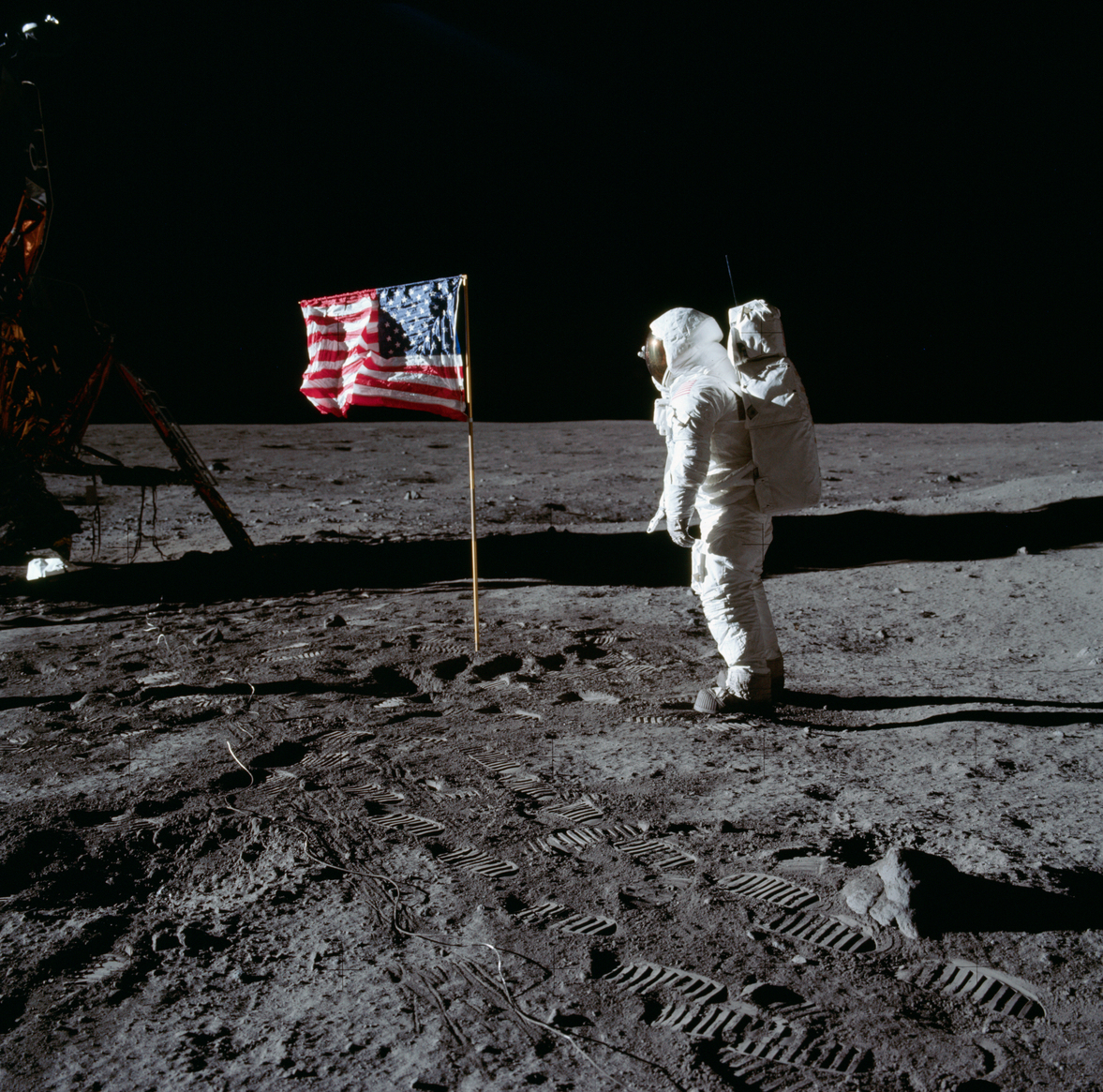 Celebrating Apollo 11's Lunar Landing: 8 Titles for National Moon Day