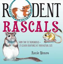 Rodent Rascals: From Tiny to Tremendous – 21 Creatures at Their Actual Size