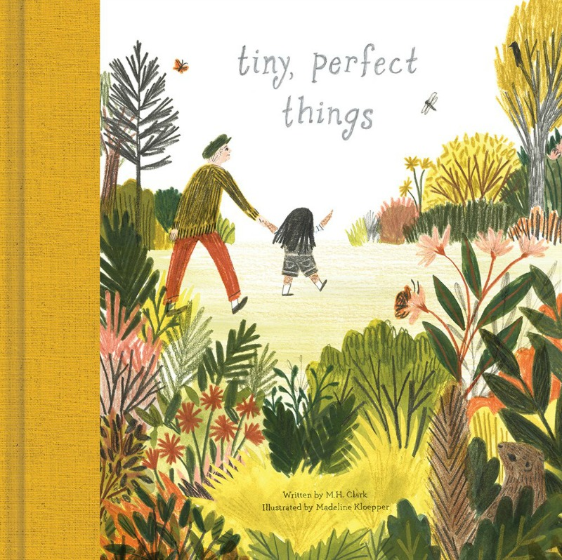 Teaching Ideas for 'Tiny, Perfect Things'