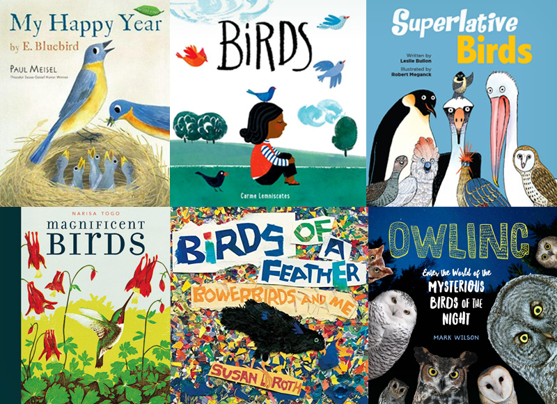 Birds of a Feather | New Books for Young Readers