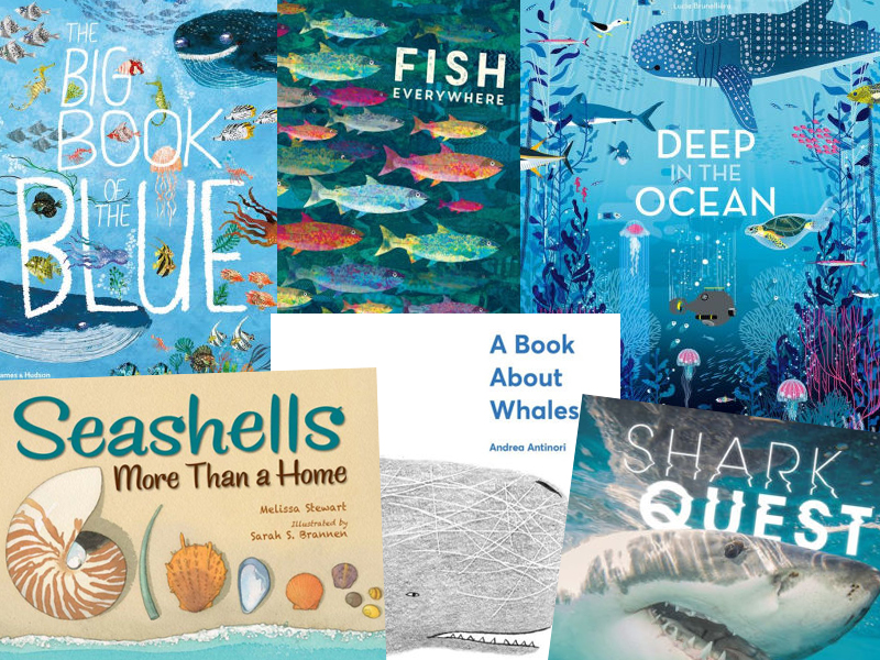 Teeming with Life: Our Bountiful Oceans | New Books