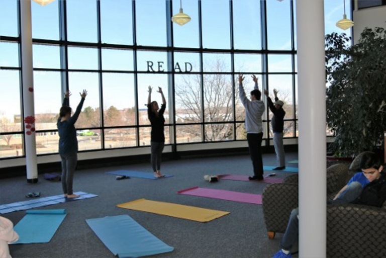 Launching a Library Health and Wellness Program